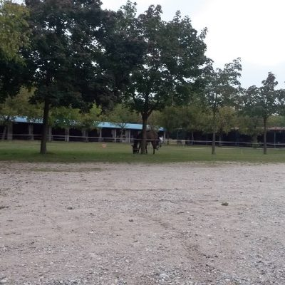 Circolo Equestre di Spresiano