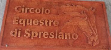 Risultati S. Giovanni in Marignano ( 30/10 – 02/11/2014 )
